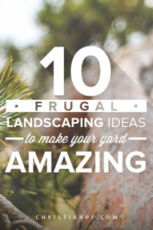 10 Frugal Landscaping Ideas to make Your Yard Amazing