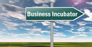 7 Startup Incubators to Check Out
