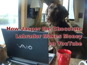 My Dog Knows How to Make Money on YouTube