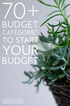 70+ Budget Categories To Consider for your Budget